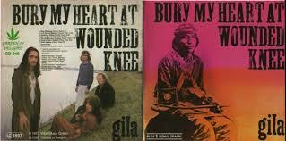 bury my heart at wounded knee book essay similar articles