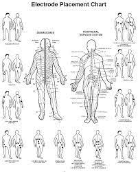 Image Result For Placement Of Electrodes For Tens Unit
