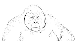 how to draw gorilla king louie from jungle book