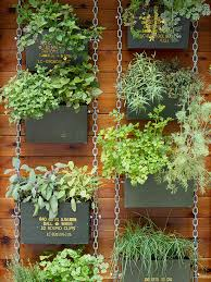 Small Picture Vertical Garden Ideas