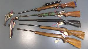 Image result for Tougher gun laws for Qld set to go ahead