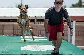 How One Guy Made a Job Out of Playing Frisbee | PawCulture