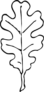Small Picture Oak leaf outline Felt Ornamental Pinterest Oak leaves