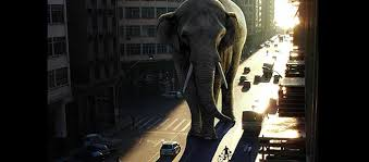 awesome lighting. Awesome Lighting Effect For A Giant Elephant