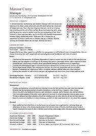 Management Cv Template Sales Manager Cv Example Free Cv Template Sales Management Jobs