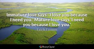 I Love You Because Quotes Enchanting I Love You Quotes BrainyQuote