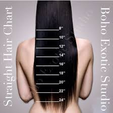 Straight Hair Length Chart Bestudio Length Chart