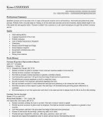 Esthetician Resume Professional Template How To Create Resume Format