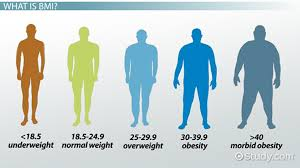 Underweight Normal Overweight Obese Chart What Is Bmi Definition Formula Calculation
