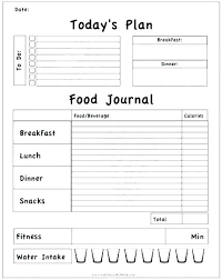 Work Diary Template Work Journal Template Excel
