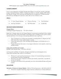 How Do You Spell Resume Plural Best Sample Ry For Job Application Extraordinary Resume Plural