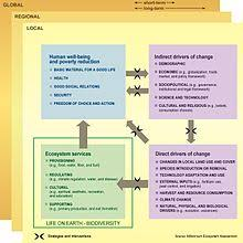 biodiversity a schematic image illustrating the relationship between biodiversity ecosystem services human well being and poverty the illustration shows where
