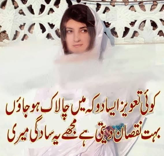funny shayri on love in urdu