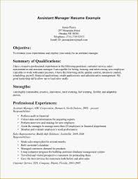 Customer Service Resume Template Free Bank Manager Resume Template Resume Builder 100