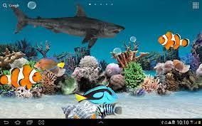 Fish 3D Live Wallpaper for Desktop ...