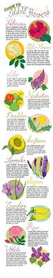 56 Best Flower Charts Images In 2019 Flower Chart