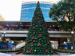 Tree Lighting Jacksonville Wednesday Night Downtown Tree Lighting Cathedral District