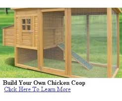 Learning K  Hen house designs constructionDIY Chicken Co op Plans Free