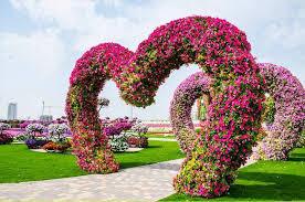 flowers for garden. World\u0027s Largest Flower Garden Flowers For