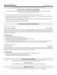 Good Resume Templates Cool Good Resume Templates Good Resume Summary Ambfaizelismail