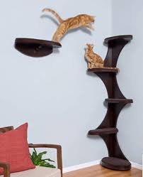 trendy cat furniture. cat playing shelves idea trendy furniture