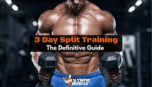 3 day workout routine the definitive