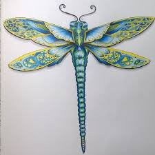 Small Picture 36 best Colouring Dragonfly images on Pinterest Adult coloring