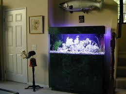 fish tank lighting ideas. Gallon Fish Tank Ideas Lighting