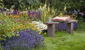 Alan Titchmarsh Tips Growing Lavender Garden