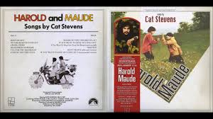 I Think I See The Light Harold And Maude If You Want To Sing Out Sing Out