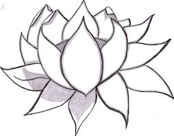 Small Picture Best 25 Flower line drawings ideas on Pinterest Sketch Rotring