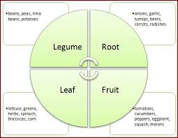 Crop Rotation Chart Vegetable Gardening Gardening Advice Crop Rotation Companion Planting And