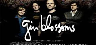 White Oak Amphitheater Greensboro Nc Seating Chart White Oak Amphitheatre Welcomes Gin Blossoms With Special
