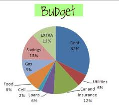 Project On Family Budget For A Month The Budget Breakdown Newlyweds On A Budget