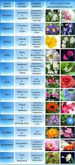 Birth Flower Chart Birth Flowers Aprils Daisy And Sweet Pea Birth Flower