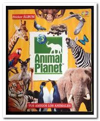 Animal Photo Albums Album Animal Magdalene Project Org