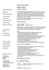 Curriculum Vitae Template Free Sample Resume Letters Job Application