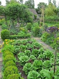 Small Picture Best 20 Kitchen garden ideas ideas on Pinterest Potager garden
