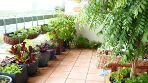 balcony herb garden pots small balcony garden design ideas balcony garden privacy