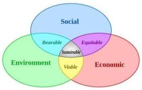 essay on environment sustainability and business green clean guide sustainable development