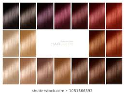Hair Dye Colors Chart Chart Hair Color Images Stock Photos Vectors Shutterstock
