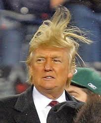 The Worst Donald Trump Photos - Donald-Trump-Bad-Hair-Photo-1-1