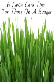 Budget Lawn Care 6 Frugal Lawn Care Tips That Youll Find Extremely Helpful