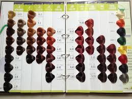 Argan Oil Color Chart 54 Colors Vb Salon Hair Color Chart