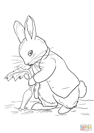 Peter Rabbit Coloring Pages Coloringtop Com Embroidery Animals
