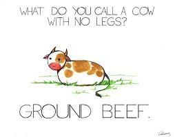 Image result for cow puns