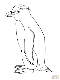 Penguins Coloring Pages Cute Baby Penguin Coloring Page From