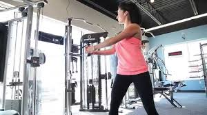 Life Fitness G7 Ab Twist Workout