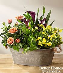 dish gardens. Autumn Moods Blooming Dish Garden By Better Homes And Gardens® Gardens S