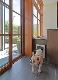 8 types of pet doors how to choose the